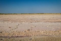 Salt field on former bottom of the Aral Sea near Ara
