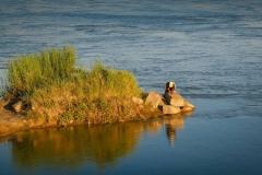 Fisherman on the banks of the Syr-Darya